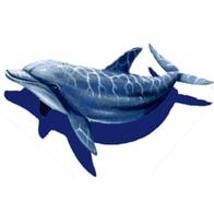 Мозаичное панно дельфин 1